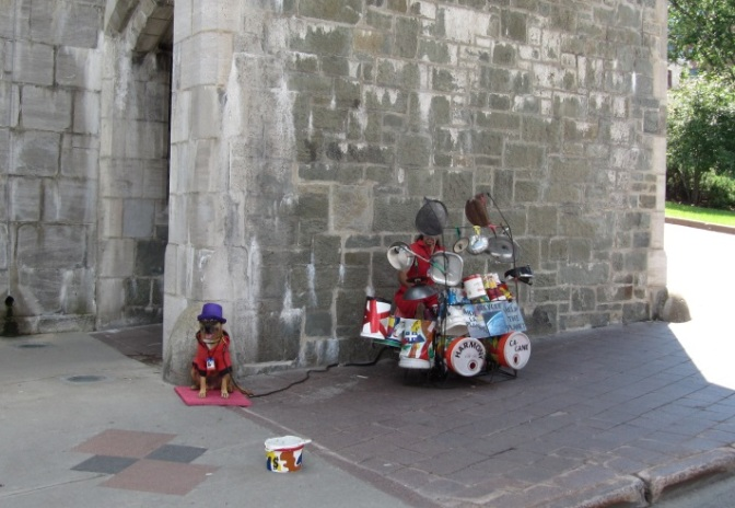 Street drummer with nice dog