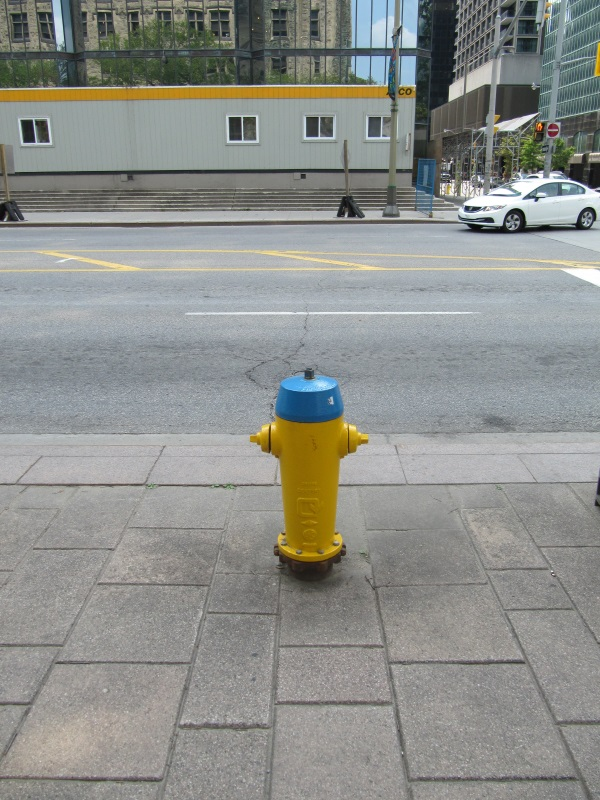 I liked fire hydrants in Ottawa! Did they paint it on purpose in colors of Ukrainian flag?