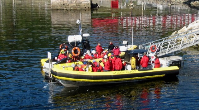 Small Zodiac boats are also available for whale watching