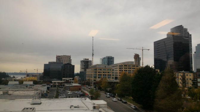 Typical day with grey skies and drizzle in Bellevue.
